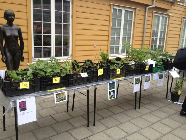 #planteloppemarked